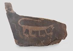Mountain Lion Petroglyph (Ron Wolf) Tags: anasazi anthropology archaeology nationalpark nativeamerican petrifiedforestnationalpark puebloan display mountainlion museum panel petroglyph rockart zoomorph arizona