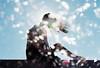 New Years (Hayden_Williams) Tags: girl women pose shadow silhouette bright light bokeh sunlight shining illuminate illuminated shiny sun heavenly beautiful beauty dream surreal film analog analogue canonae1 fd50mmf18 kodakportra400 doubleexposure multipleexposure