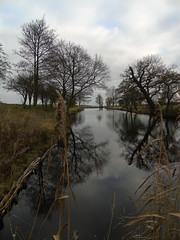 Canal reflection (Oxford Murray) Tags: canal water landscape cloudy reflection lyveden nt nationaltrust oxfordmurray
