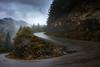 Carretera a los sueños encantados (juanjoselopezmartin) Tags: ordesa sarvise fanlo carretera otoño niebla lluvia rain road rx100 españa pirineos huesca parque nacional puerto curva paisaje