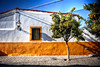 Farola Naranjo - Santiponce - Sevilla (mgarciac1965) Tags: calle ventana farola arbol naranjo naranja cal blanco azul santiponce sevilla seville andalucía andalucia andalusia españa spain nikond5200