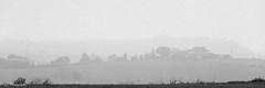 20161231Brouillard-7 (loflol) Tags: coteaux brouillard brume ancien grain