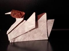 Origami Water Bird Duck - Barth Dunkan (Bluest Dragonfly☆Love the magic of Mother Nature) Tags: duck waterbirdduck origami paper paperfolding papiroflexia pato nature barthdunkan mallardtutorial marianozavala