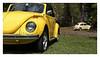 17_02_05_119p (2) (Quito 239) Tags: volkswagen 1971volkswagen 1971volkswagensuperbeetle superbeetleconvertible vw bug vocho escarabajo puertorico haciendaigualdad volky