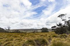 Cradle Mountain Tasmania (Steven Penton) Tags: tasmania australia cradle mountain