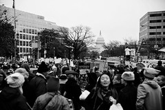 21/365 - This is what democracy looks like! (This is what democracy looks like!) (puckish) Tags: democracy womensmarch washingtondc capitol protest march rally 365the2017edition 3652017 day21365 21jan17