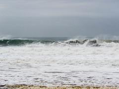 IMG_2874.jpg (sfanshier) Tags: winterwaves beach torreypinesstatebeach ocean torreypinesstatepark waves