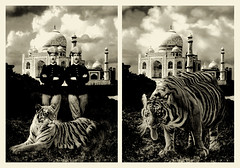 India trip (Anandamide) Tags: show mostra trip india art torino perfect arte 2006 photomontage ironic artifacts familyalbum fotomontaggi albumdifamiglia jpeggy giulianococco albumdifamiglia02