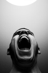 Scream!! (noamgalai) Tags: portrait blackandwhite white newyork black self mouth photography photo nikond70 fear picture anger photograph scream screaming yelling yell noam allrightsreserved shouting shout   photomania  noamg galai noamgalai   aplusphoto wwwnoamgalaicom