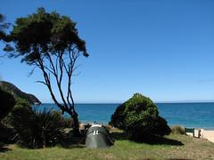 IMG_3147.jpg (Bebakus) Tags: newzealand southisland abeltasmannationalpark abeltasmancoastaltrack
