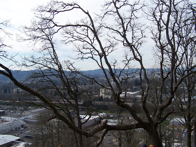 Looking over Eugene 2