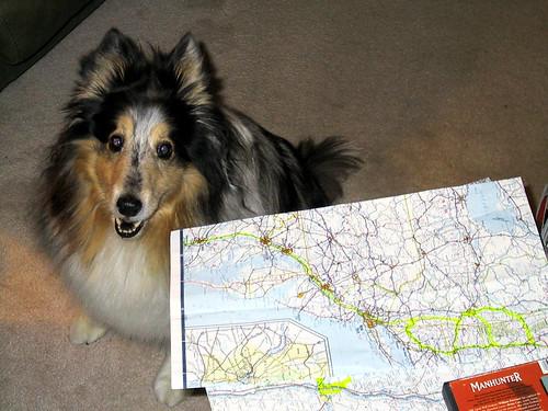 Shiloh Plans a Trip [1343]