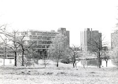 Around Campus (Essex University - Photographic Archive) Tags: ph35 essex campus blackandwhite trees nature library towers lakes water