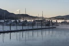 Statter New ramp 3344 (Gillfoto) Tags: aukebay harbor alaska juneau boats winter mist fog cold statterharbor