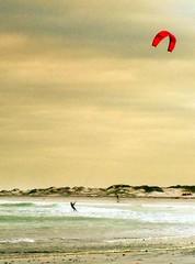 Slightly Psychedelic Surfer (Lollie-Pop) Tags: surfer zuidafrika waves suidafrika sudafrica southafrica see sea ocean kaapstad cittdelcapo capetown branders afriquedusud afrika africa