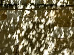 porta cega (*L) Tags: shadow lisboa sombra porta parede emparedada travessadojasmim cega