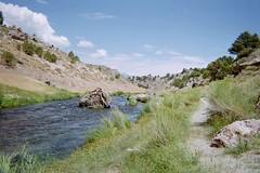 Deer in Hot Creek (flyfisherguy) Tags: brown hot mike creek river fly rainbow fishing geoff nevada sierra walker flyfishing trout tadlock okarma