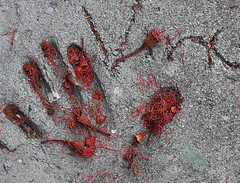 artifact on eugenia street (fotogail) Tags: sanfrancisco red 1025fav hand pavement stamens sidewalk stamen bernalheights eucalyptus popular handprint fotogail bapfs forestevidence sfchronicle96hours your300pre2006favesthanks stamenfall