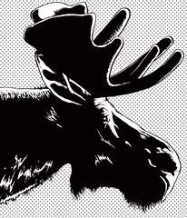 Bucky (-Antoine-) Tags: illustration drawing moose dessin buck bucky blas orignal lan antoinerouleau