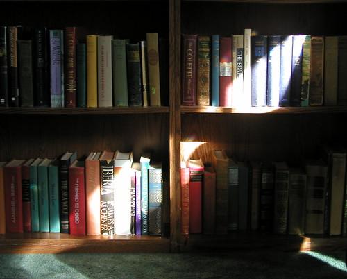 Libros en la sombra