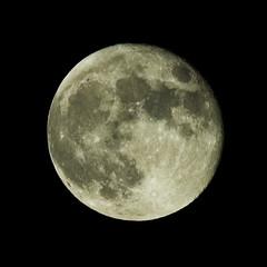 ??? (Full Moon)