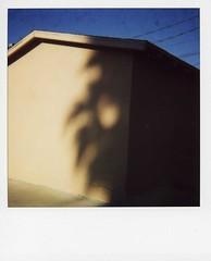 Untitled (DeborahK) Tags: polaroid losangeles 600 eaglerock onestep600 interestingness92905
