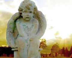 One Small Angel (MaureenShaughnessy) Tags: sunset sunlight monument cemetery statue angel 1025fav wings solitude alone glow emotion topv1111 cemetary beautifullight thinking mementomori 510favs melancholy mutedcolor weightoftheworld ggss lastlightofday 20topfaves2005 montanaraventop20 montanaravenutatafeature lightisalive waterisalive