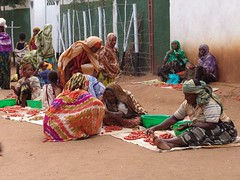 Market in Babile (CharlesFred) Tags: africa countryside african somali dailylife ethiopia afrique harar ogaden babile