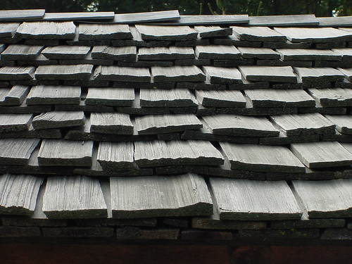 Cedar roof by coveman