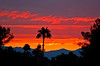Sunset 2 (gwilmore) Tags: sunset wow d50 500v20f artistic albaluminis 101805 seenfromthestreet interestingness69 explore18oct05 i500 fcsetsrises