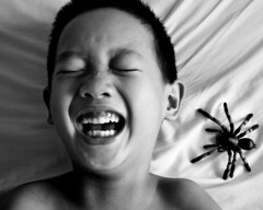 Fear Spider (waynemethod) Tags: fear spider tanrantula child boy kid people son deleteme saveme deleteme2 saveme2 saveme3 saveme4 saveme5 saveme6 deleteme3 saveme7 deleteme4 deleteme5 saveme8 saveme9 saveme10 100v10f savedbythedeletemegroup guten pss tc20emotions delete delete2 delete3 save save2 save3 save4 save5 save6 save7 save8 delete4 save9 delete5 delete6 delete7 save10 savedbythedeletemeuncensoredgroup pleaseaddthisshottothethemecompetitionwinnerspool topv999 topv1111 topf75
