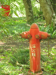 Hydrant (qousqous) Tags: red firehydrant green hitchhiking japan    hiraizumi iwate