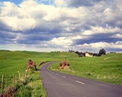 Bumpy Clouds, Ngatira Road, Waikato (EssjayNZ) Tags: 2005 newzealand green rural countryside horizon pasture fields essjaynz paddocks southwaikato taken2005 sarahmacmillan