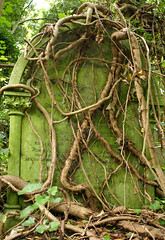 And death shall have no dominion (Dean Ayres) Tags: green london monument overgrown cemetery grave ivy algae highgate creeper top20cemetery londonflickrmeetups interestingness207 explore22oct05 i500