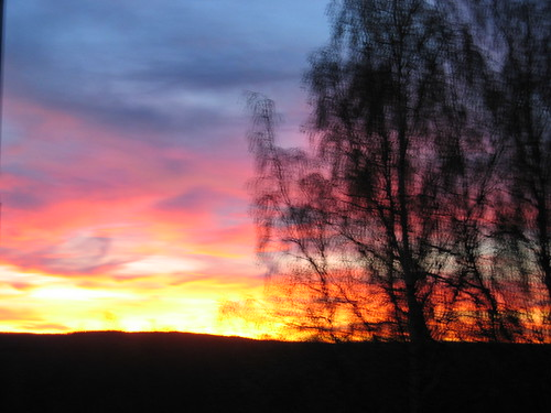 Sunset from my window (Copyright Hanna Andersson)