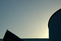 Watching (KnigChristian) Tags: nicholas grimshaw weilamrhein germany mc05negativespace bird birds minimal architecture