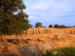 Landscape (Tonym1) Tags: landscape sky