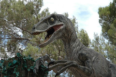 Universal Studios - 3 (Fabrizio Zago - Photography and media) Tags: california park usa america nikon dinosaur d70 raptor hollywood movies universal studios universalstudios themepark jurassic jurassicpark fabriziozago