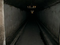 2003-06-18 Chateau Mouton Rothschild - B2 cellar 2