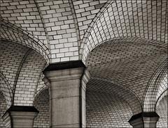 Vaulting Columns - by gaspi *yg