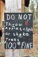 Do not throw apples, climb or shake trees $100 fine - by marcn