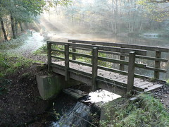 Beaming Bridge (johnmuk) Tags: johnmuk nature cannock staffordshire winter wow ilovenature autumn gutentag