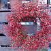 Pepperberry wreath