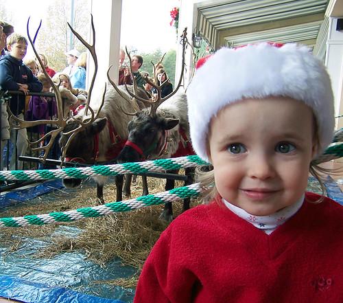 Scared of Santa's reindeer por BarelyFitz.