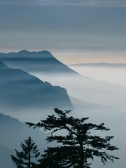 Versunkene Berge (_Carmen_) Tags: mist mountain france alps topf25 fog clouds montagne cool nebel wolken berge apex portfolio alpen aussicht savoie semnoz reiseblog semnozausflug thecontinuum bachspicsgallery