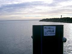 CIMG0327 (Medium) (a bashing something) Tags: ystad ribu