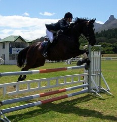 Glen Ellen - Sunday 13 November 2005 - Show Jumping