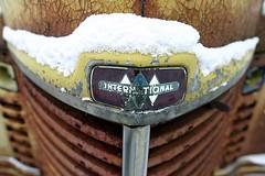 International Emblem - by jremsikjr