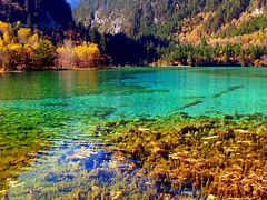 Crystal Clear (Sam's Exotic Travels) Tags: world china travel heritage site sam photos unesco exotic valley sichuan jiuzhaigou province sams travelphotos samsays samsexotictravelphotos exotictravelphotos samsayscom