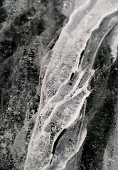 The Method of Continued Fractions. Or, How I can feel it all cracking (cant you?!) and cant help but egg it on. (Chris Lombardi) Tags: bw lake ice quote crack leonardcohen iceciphers